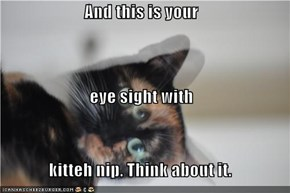 And this is your  eye sight with  kitteh nip. Think about it.
