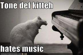 Tone def kitteh  hates music