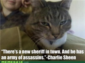 Cat's Quote Charlie Sheen