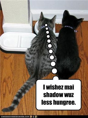 I wishez mai shadow wuz less hungree.