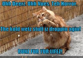 Ohh Deerz. Ohh Noes. Teh Horror. The kold wetz stuff iz droppin agin! RUNZ FUR YUR LIFEZ!