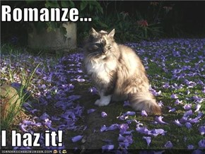 Romanze...  I haz it!