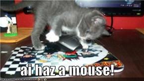 ai haz a mouse!