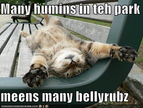 Many humins in teh park  meens many bellyrubz