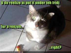 U do reelize ai put it under teh fridj  fur a reezun...                                                               ...right?