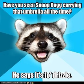 Have you seen Snoop Dogg carrying that umbrella all the time?