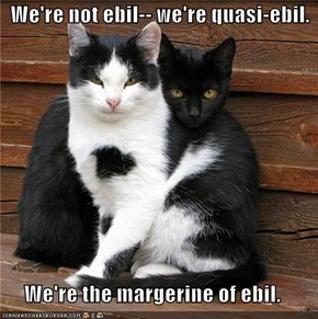 We're not ebil-- we're quasi-ebil.  We're the margerine of ebil.