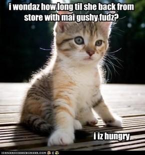 i wondaz how long til she back from store with mai gushy fudz? i iz hungry