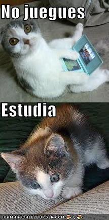 No juegues Estudia