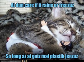 Ai dun care if it rains or freezuz