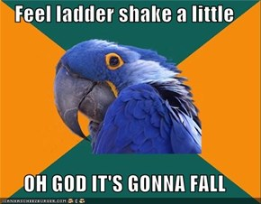Feel ladder shake a little  OH GOD IT'S GONNA FALL