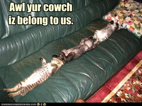 Awl yur cowch  iz belong to us.