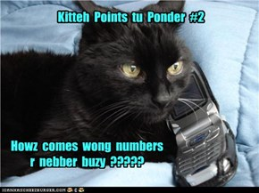 Kitteh  Points  tu  Ponder  #2