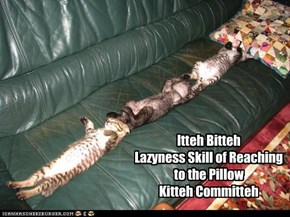 Itteh Bitteh  Lazyness Skill of Reaching to the Pillow  Kitteh Committeh