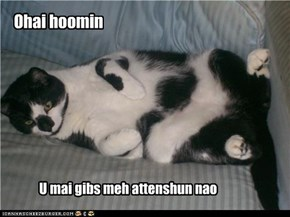 Ohai hoomin