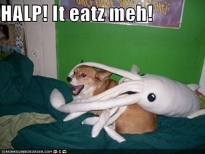 HALP! It eatz meh!