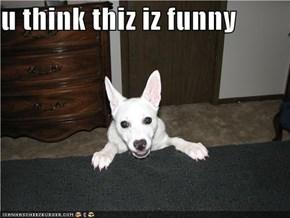 u think thiz iz funny