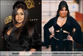 Snooki Totally Looks Like Italian actress Anna Maria Barbera
