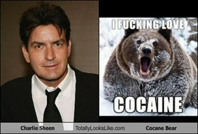 Charlie Sheen Totally Looks Like Cocane Bear