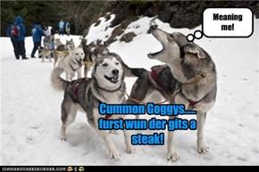 Cummon Goggys..... furst wun der gits a steak!