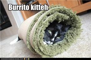 Burrito kitteh