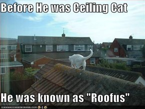 "Before He was Ceiling Cat  He was known as ""Roofus"""