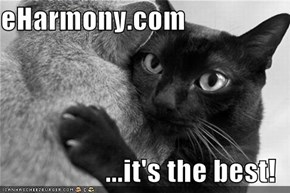 eHarmony.com  ...it's the best!