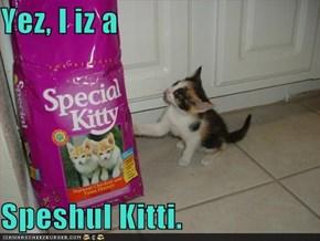 Yez, I iz a   Speshul Kitti.