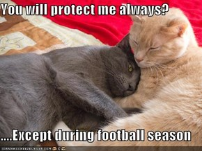 You will protect me always?  ....Except during football season