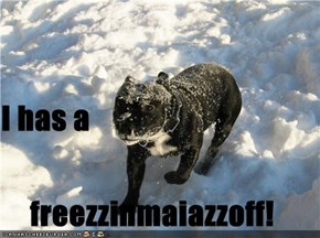 I has a freezzinmaiazzoff!
