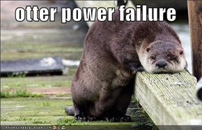 otter power failure