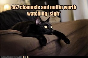 467 channels and nuffin worth  watching *sigh*