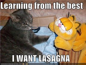 Learning from the best  I WANT LASAGNA