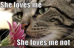 She loves me  She loves me not