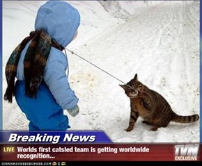 Breaking News - Worlds first catsled team is getting worldwide recognition...