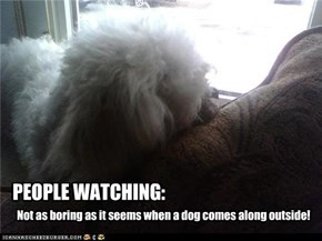 PEOPLE WATCHING: