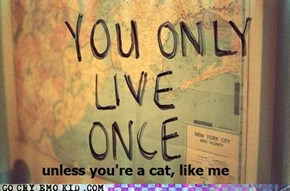 I Have the Full Nine Lives...