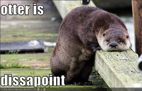 otter is  dissapoint
