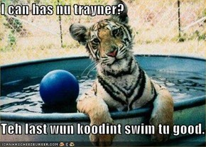 I can has nu trayner?  Teh last wun koodint swim tu good.