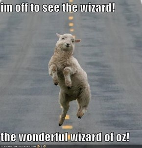 im off to see the wizard!  the wonderful wizard of oz!