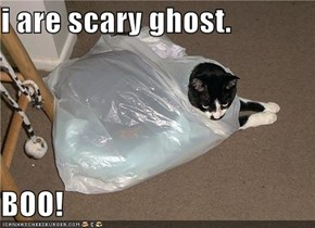 i are scary ghost.   BOO!