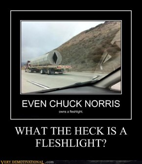 WHAT THE HECK IS A FLESHLIGHT?