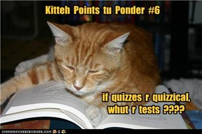 Kitteh  Points  tu  Ponder  #6