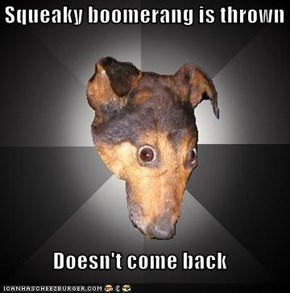 Squeaky boomerang is thrown  Doesn't come back