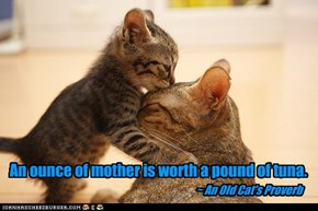 An ounce of mother is worth a pound of tuna.
