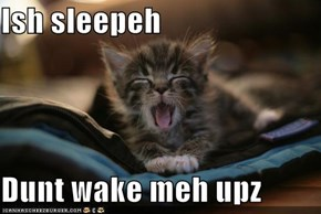 Ish sleepeh  Dunt wake meh upz