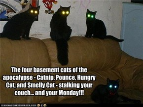 The Four Basement Cats of the Apocalypse!
