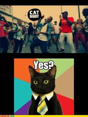 CAT DAAAAAAAAAAAAADYYY!
