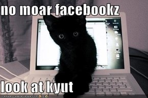 no moar facebookz   look at kyut