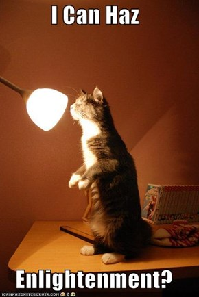 I Can Haz  Enlightenment?